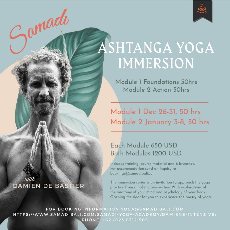 Damien Intensive - Yoga Immersions Training